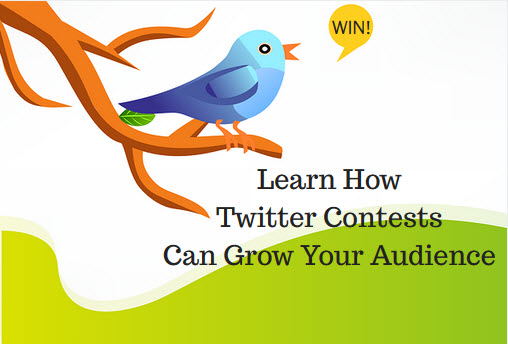 How Twitter Contests Can Grow Your Audience