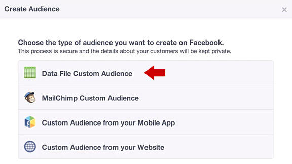 Facebook Ads with Custom Audiences