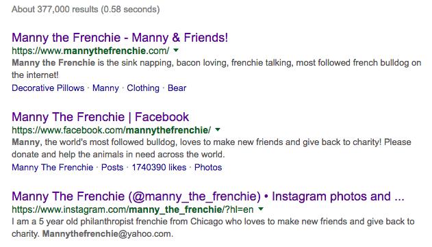 mannythefrenchie-google